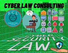 Cyber Law Consultancy